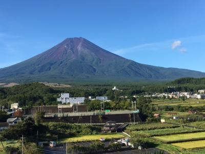 台風だけど、食べて、泊まって、富士山を見る。 鐘山苑泊(ふるさと納税利用、実質?千円)