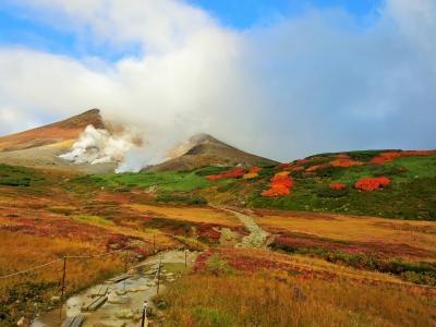 日本一早い色鮮やかな紅葉《旭岳》ロープウェイ姿見駅から散策♪