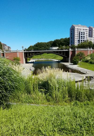 山あり池あり、芝生、と多種多様に楽しめる長池公園!