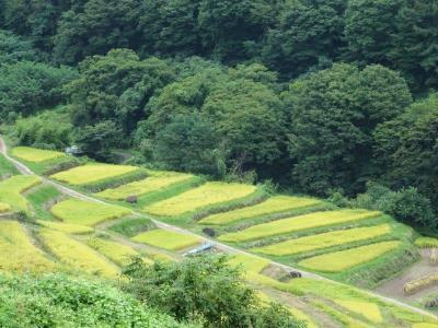 【高峰山・小布施】日本の秋