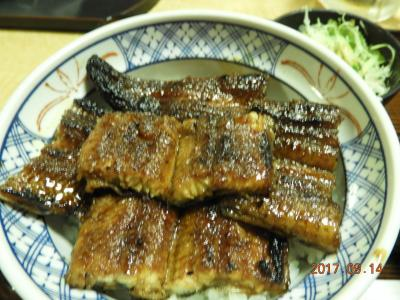 昼に鰻を食べて夜は氷見でお刺身、朝は民宿の少ないおかず、昼は富山で鮨、贅沢三昧でした。