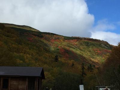 地元民が行く紅葉の大雪山!