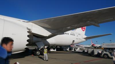 JALホーチミン搭乗記2017/09 (NRT=SGN B788 Cビジネス) 秋もいただきました。