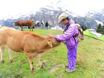 2017 爺とお嬢のスイス旅 アルメントフーベル ミニハイキング
