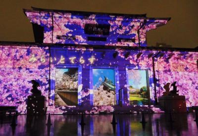秋の夜長参拝 みらいとてらす 幻想的な光に彩られた靖国神社