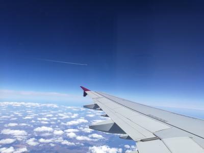 QR222便搭乗記 特別食「アジアンベジタリアンミール」にトライしてみる。