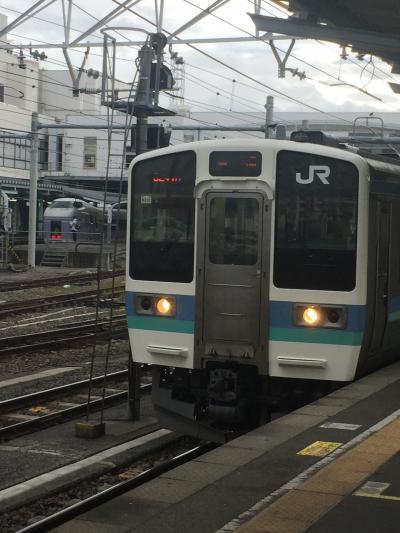アルピコ交通上高地線と松本城