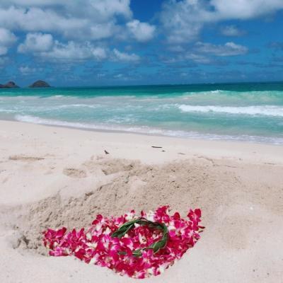 """32-3(9-12)★楽園のハワイに全員集合(*^^*)③♪雑誌やTVで紹介されたビーチ&グルメ巡り『☆オアフ東回り編』♪最終日のディナーは""""クラッキン・キッチンで"""""""