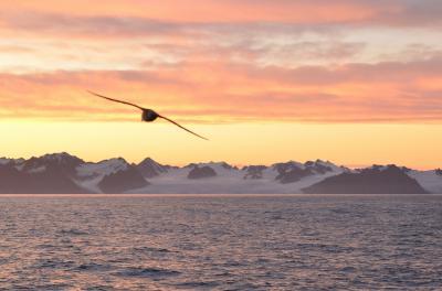 スヴァールバル諸島・スピッツベルゲン探訪6日間クルーズ・・・1