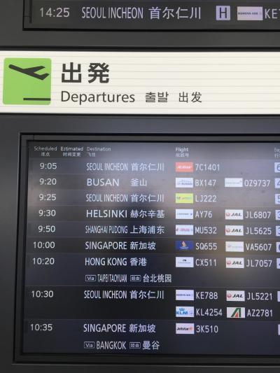 博多からの韓国周遊2