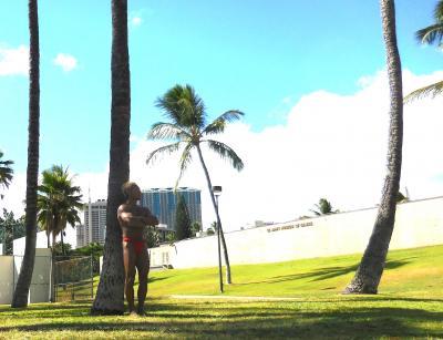 ソリちゃん、初めてハワイへ行く 後半