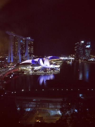 2017 シンガポール (旅行中速報版でした! 詳細は後日!)