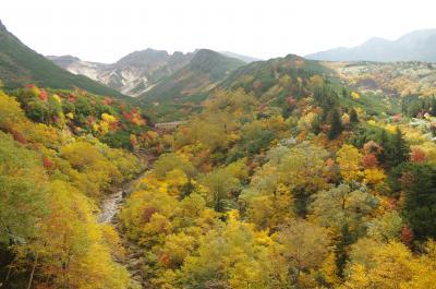 秋の北海道旅行 2日目