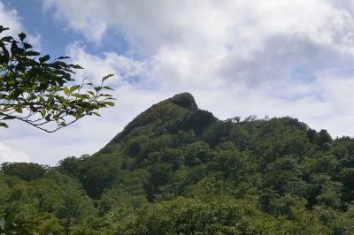 秋を探しに 岐阜県と福井県の境の冠山へ