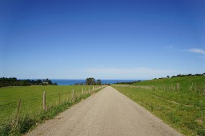 ニュージーランド・南島トレッキングの旅 6・7日目 カイコウラ~クライストチャーチ~オークランド~上海~成田