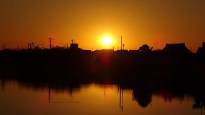 早朝散歩 鴻池第一公園 久しぶりに日の出を見ました 下巻。