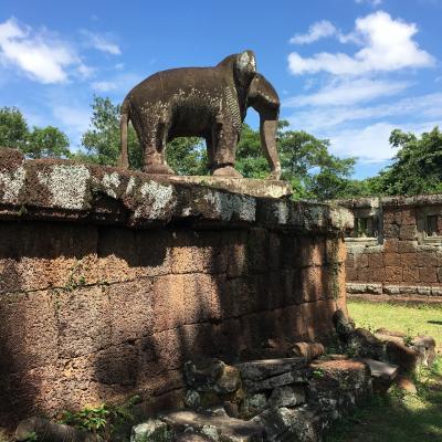 アンコールワットのおすすめ観光スポット 東メポン寺院と象さんの像