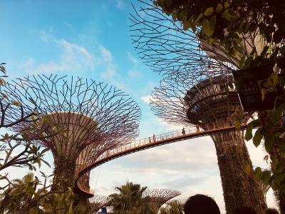 2017.09 恒例、9月のシンガポール旅行@フォーポイントバイシェラトンシンガポール