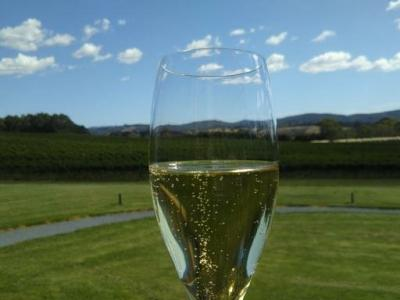 サウスオーストラリアからタスマニアまでワイン紀行