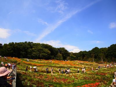 里山ガーデン秋の大花壇公開へ行ってみた!