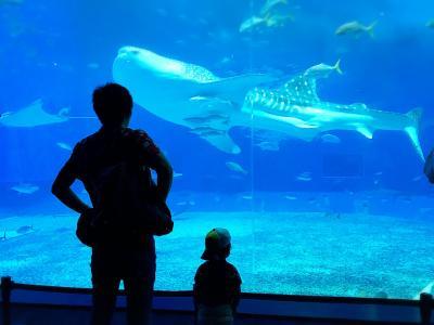 【ルネッサンスリゾート沖縄】ANAマイルで行く1歳9ヶ月幼児連れ家族旅行/2日目