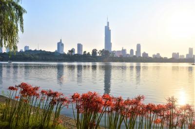 【中国】上海・南京と烏鎮の水郷風情をぶらり歩き(3/烏鎮→湖州→南京)