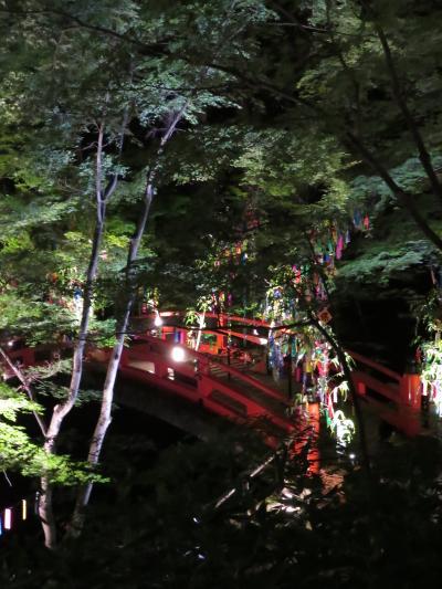 京の七夕2017 ~北野天満宮会場