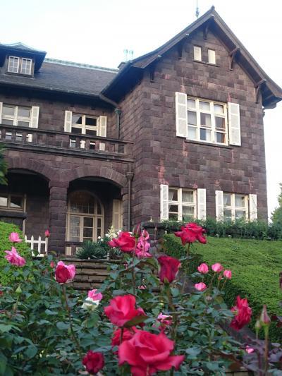 薔薇が3分咲きの旧古河庭園を散歩・上中里七福神     :*:・゜'★.。・:*:・゜'☆♪