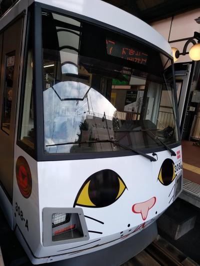 玉電110周年記念 幸福の招き猫電車と世田谷観音朝市