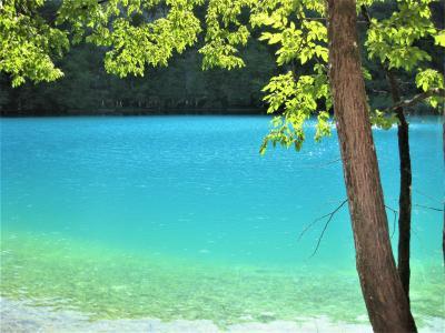 クロアチア・スロベニアを廻る夫婦旅15日間 【8】 プリトヴィッチェへ移動し下湖を楽しむ