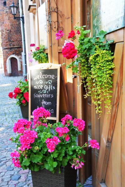 Riga の街を歩いてみた ②  /  タリンとはどう違う?