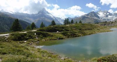 スイス 車窓から、そして目の前で眺める絵葉書のような風景-7(ロカルノ→<チェントヴァッリ鉄道>→ツェルマット)