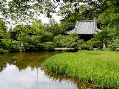 フィンランドの友人と奈良・京都へ5-法隆寺,長岳寺,奈良ロイヤルホテルに2泊,nanairo terrace