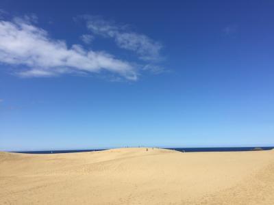 砂の美術館と浦富島めぐり遊覧船 鳥取梨狩りの旅
