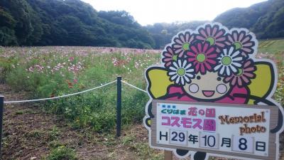 くりはま花の国 2017.10.8