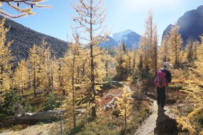 黄葉のロッキーハイキング(3)