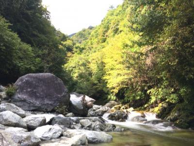 とっても気持ちいい、尾白川トレッキング!からの温泉満喫♡日帰りの旅