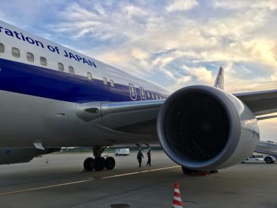 【2017年10月】成田山と成田空港と宮崎空港?