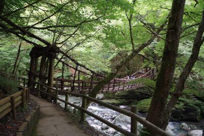 奥祖谷かずら橋とかかしの里