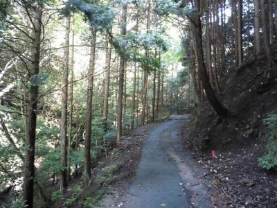 「釈迦岳・ポンポン山ハイキング」