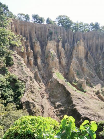 阿波の土柱 天然記念物の特異な景観 ☆地元ガイドの説明を受け感銘