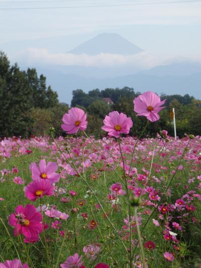 ほんのり秋めいた甲州路(昇仙峡とパワースポットと、時々富士山)