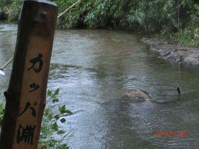 雫石2泊レンタカー付フリーツアー(3/3 遠野)