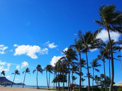 2017ハワイ島で夏休み 6日目 オアフ島に移動~アラモアナ滞在