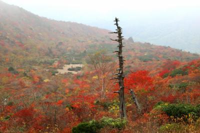 ◆雲霧に燃ゆる那須岳・紅葉紀行2017、Part2