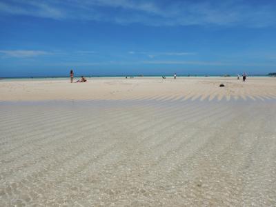 百合ヶ浜に行きたい!与論島で満喫一人旅