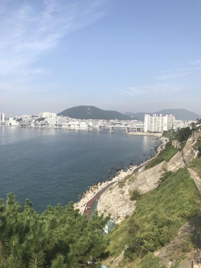 今年4回目の釜山は旅友と珍道中