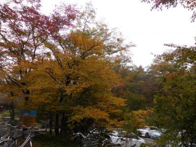 ソリさんの週末の軽井沢 榛名湖へもお出かけ