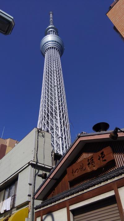 どこかにマイル~で東京へ~(^o^)2回目!ヒルトンお台場