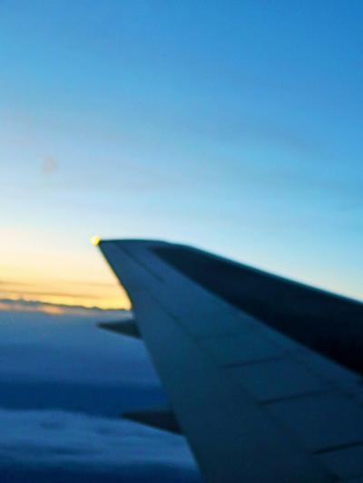 羽田空港 日本航空462便 夕暮れを越え定刻到着 ☆徳島県助成ミステリーツアー満足!